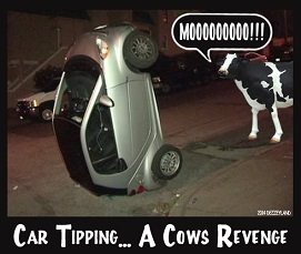 Car Tipping... A Cows Revenge by DEZZEYLAND